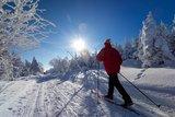 thumbnail - Skifahrer