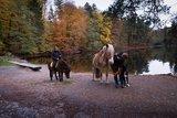 thumbnail - Reiter am Donoper Teich