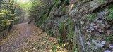 thumbnail - Moosbewachsene Felsen in der Ludwigsklamm bei Eisenach