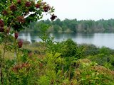 thumbnail - Grabschützer See
