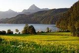 thumbnail - Blick über den Weißensee