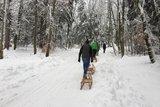 thumbnail - Winterlicher Weg zur Käser-Alm