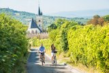 thumbnail - Radweg an der Burgkirche Ingelheim