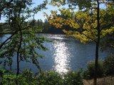 thumbnail - Teichlandschaft