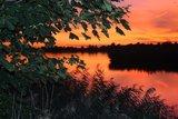 thumbnail - Abenddämmerung in der Teichlandschaft.