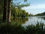thumbnail - Mühlensee