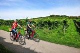 thumbnail - Radfahrer im südlichen Rheinhessen