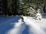 thumbnail - Langlauf Geyerscher Wald