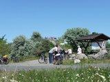 thumbnail - der Mottenhügel am Grabschützer See