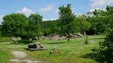 thumbnail - Start zur Tour an der Bockshornklippe in Gr. Steinum
