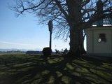 thumbnail - Maria Dank Kapelle