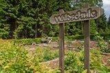 thumbnail - Walderlebnispfade Eichhörnchen- und Wildschweinweg - Waldschule