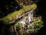 thumbnail - Wasserlauf im Vessertal
