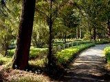 thumbnail - Ehrenfriedhof Bad Lippspringe