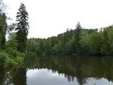 thumbnail - Neuer Teich - idyllisch ruhig gelgen