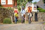 thumbnail - Radtruppe in der Grafschaft Bentheim