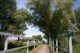 thumbnail - Brücklein über den Vilsflutkanal bei Eichendorf.