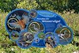 thumbnail - Infotafel: Paradies für Wasservögel