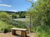 thumbnail - Bank auf dem Bienenlehrpfad Jahnsgrün und Oberhartmannsdorfer Rundweg am Jahnsgrüner Teich