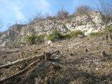 thumbnail - Jura-Formation am Achalm-Gipfel