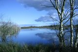 thumbnail - Hohes Moor bei Oldendorf, Altes Land am Elbstrom