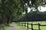 thumbnail - Pferdekoppel am Wanderweg