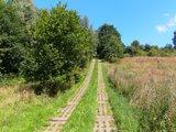 thumbnail - Kolonnenweg - Grenze zu Thüringen