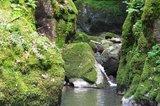 thumbnail - Auf dem Weg zum Haselbachwasserall