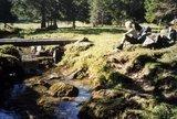 thumbnail - Stuiben - Allgäuer Picknickplätze