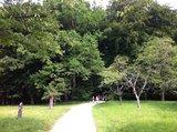 thumbnail - Wiesen und Wälder