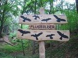 thumbnail - Station 15: Flugbilder