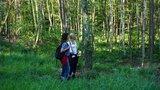 thumbnail - Naturwald Düsterbeek