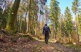 thumbnail - Wanderer unterwegs