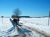 thumbnail - Wandern auf dem Harzweg