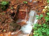 thumbnail - Rostige Erde: Das rot färbende Wasser im benachbarten Bach ist ein Hinweis darauf, dass hier im Untergrund nicht nur Kohle, sondern auch Eisen vorkommt, das im Wasser gelöst ist und sich beim Austritt an die Luft mit ihr verbindet. So entsteht