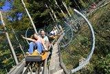 thumbnail - Bergab mit dem Alpsee-Coaster