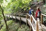 thumbnail - Wanderung durch die Buchenwälder des Nationalparkes Jasmund