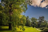 thumbnail - Unsere Wanderung führt durch den Park in Putbus