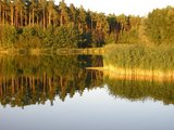 thumbnail - Der Rothsee