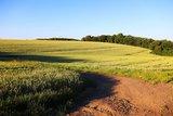 thumbnail - Felder bei Kürrenberg