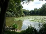 thumbnail - Der große See im Landschaftspark Bagno