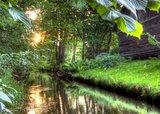 thumbnail - Fließ im Spreewald
