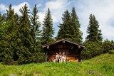 thumbnail - Bergtour - Weitalpspitz, an der Weitalm