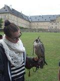 thumbnail - WildPark Schloss Tambach