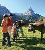 thumbnail - Familie Küh und im Hintergrund der markante Geistelstein
