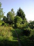 thumbnail - Naturlehrpfad am Schwarzmoosbach