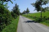thumbnail - Eine kleine Allee begleitet den Wegeverlauf bei der Siedlung Isenburg