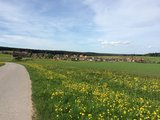 thumbnail - Igelsberg, ein idyllisch gelegener Stadtteil von Freudenstadt