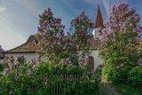 thumbnail - Frauenkapelle Malgersdorf