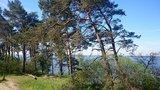 thumbnail - Wildflüchter auf der Südspitze Gnitz